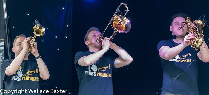 17. Brass Section