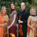 Crystal Palace String Quartet