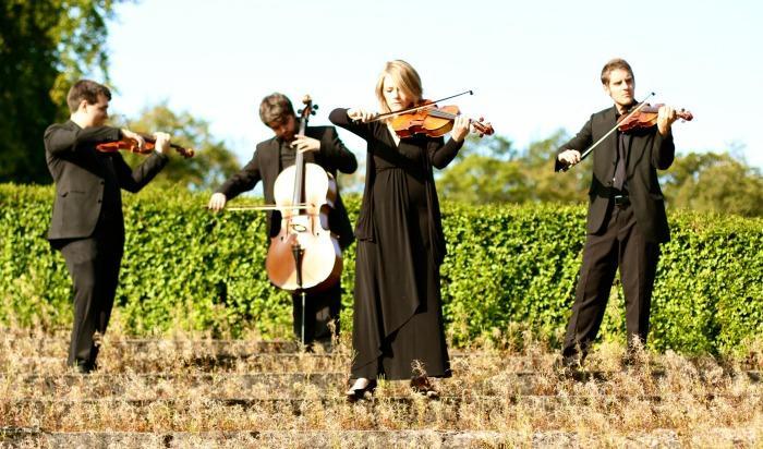 Erskine String Quartet : main Freak Music profile photo