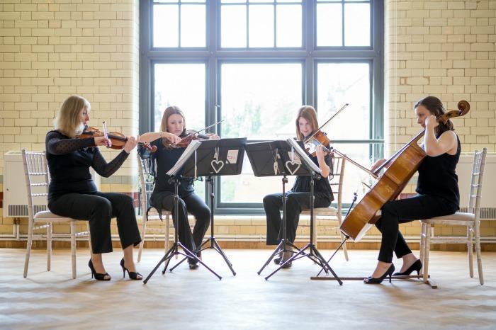 Highly Strung Quartet : main Freak Music profile photo