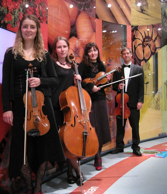 1. Magenta Strings at the opening of Leeds City Museum