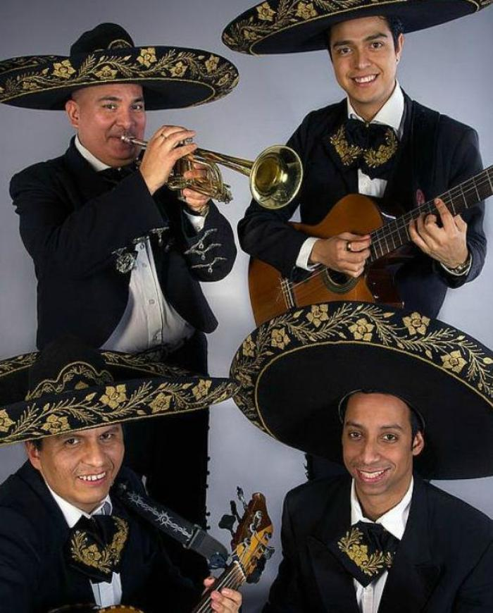 Mariachi Fiesta : main Freak Music profile photo