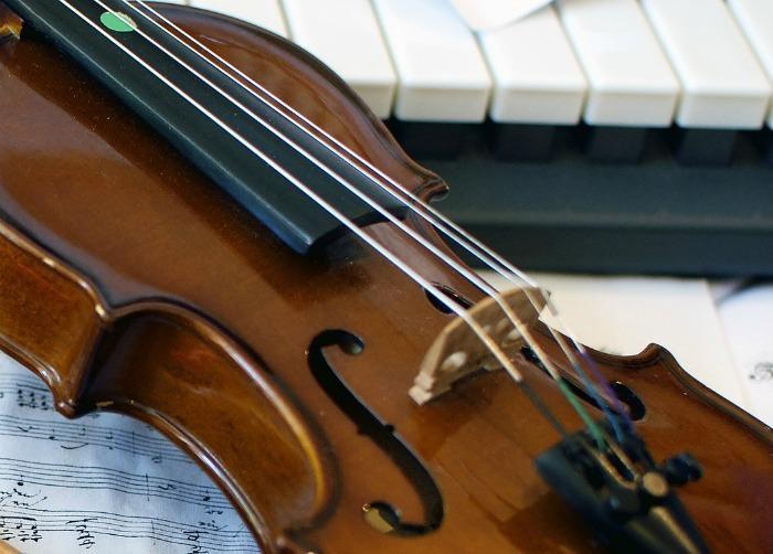 Select Strings : main Freak Music profile photo