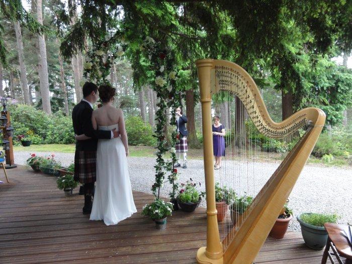 4. Harp 5