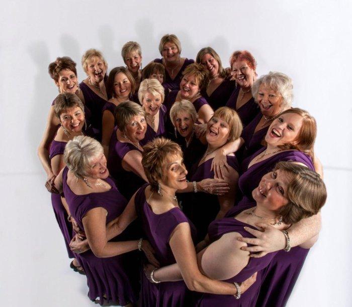 Signature Singers : main Freak Music profile photo
