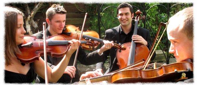 1. Strelitzia String Quartet