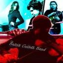 The Baltik Ceilidh Band