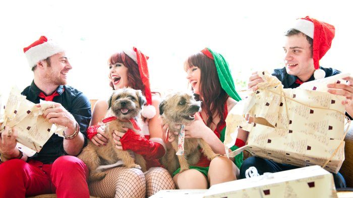 The Crazy Christmas Band : photo : Crazy Xmas 4