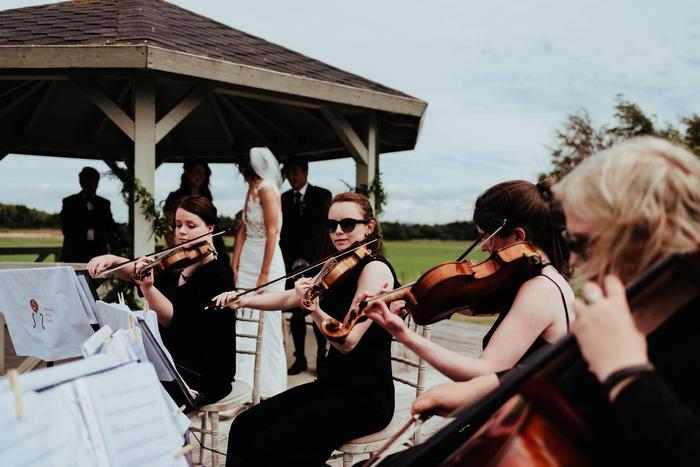 The Rosewood String Quartet : main Freak Music profile photo