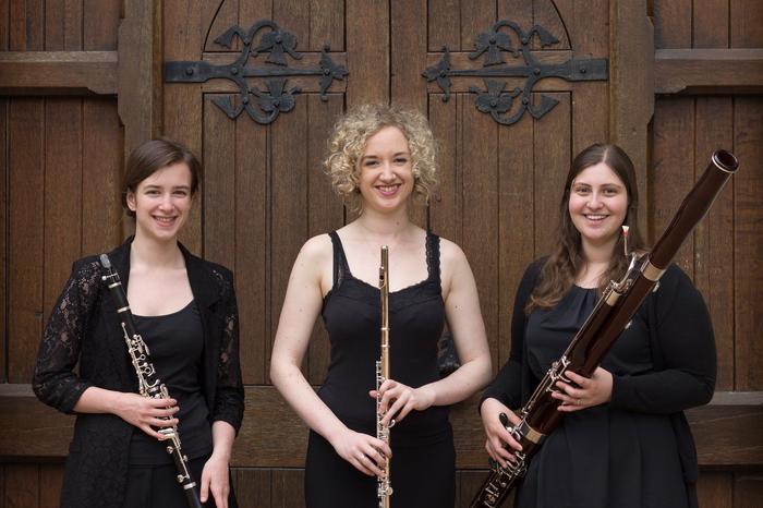 Ulmus Trio : main Freak Music profile photo