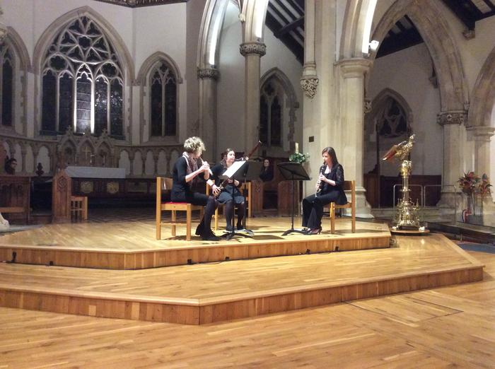 3. Ulmus Trio