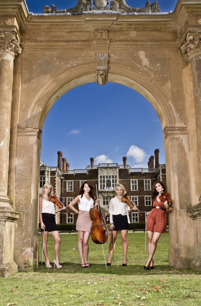 3. Vanity Strings Quartet