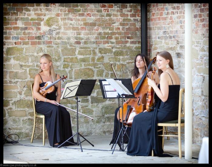 4. Vanity Strings Trio