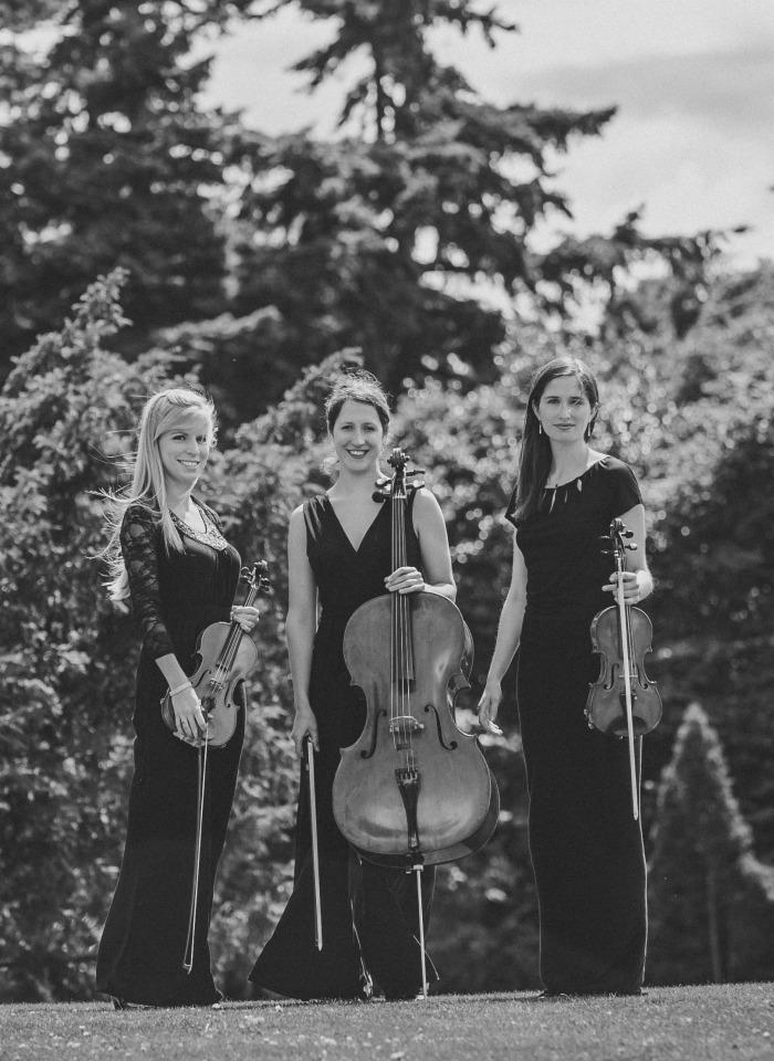 6. Vanity Strings Trio